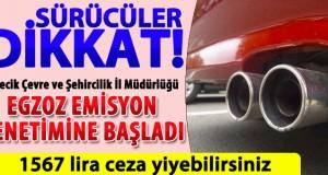 EKSOZ EMİSYON PULU